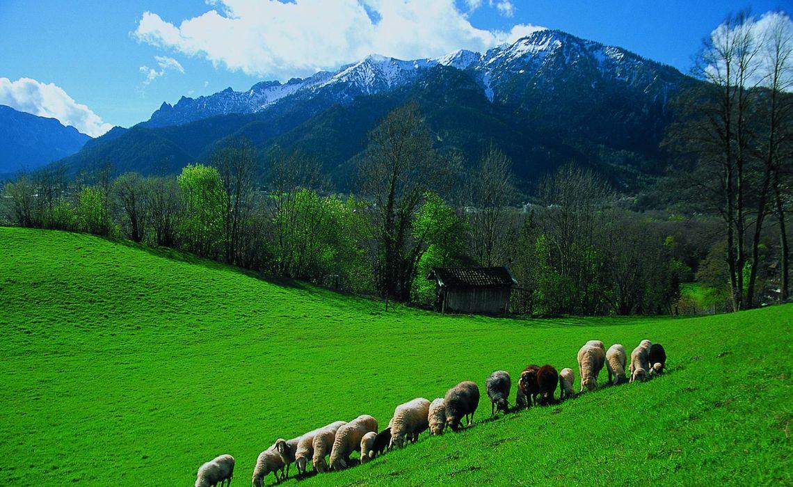 Lattengebirge Von Nonn