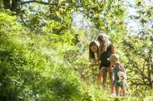 Urlaub mit Kindern am Gschwandtgut im Salzburger Land