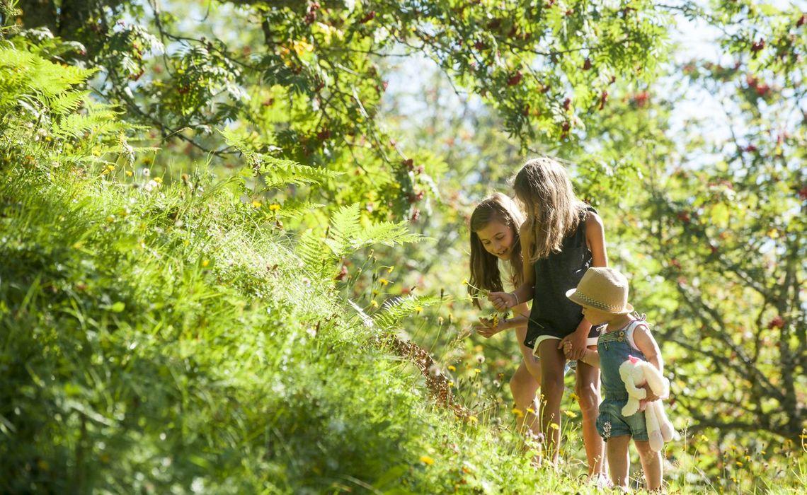 Urlaub Mit Kindern Am Gschwandtgut